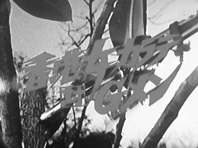 Gメン75 第292話 香港の女カラテ対Gメン