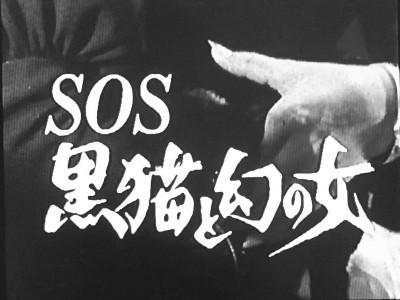バーディー大作戦 第23話 SOS 黒猫と幻の女